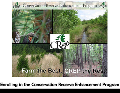 Enrolling in the CREP Program